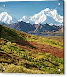 Denali Autumn Acrylic Print by Tim Newton