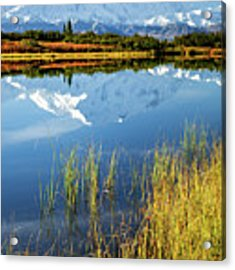 Denali Reflection Acrylic Print by Tim Newton