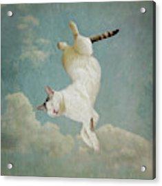 Dreaming Of Tiepolo Acrylic Print by Sally Banfill