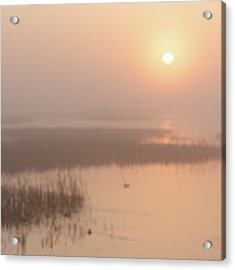 Foggy Sunrise At Cheyenne Bottoms -02 Acrylic Print by Rob Graham