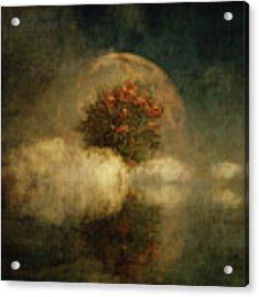 Full Moon Over Misty Water Acrylic Print by Jan Keteleer