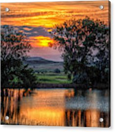 Golden Pond At 36x60 Acrylic Print by Fiskr Larsen