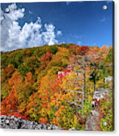 Hillside Of Color Acrylic Print by Dan Friend