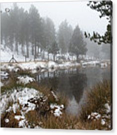 Idyllic Winter Forest Landscape  At Troodos Mountains, Cyprus Acrylic Print by Michalakis Ppalis