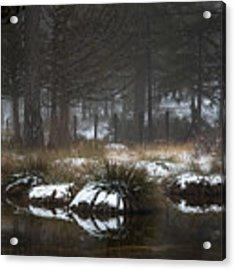 Idyllic Winter Landscape With A Frozen Lake At Troodos Mountai Acrylic Print by Michalakis Ppalis