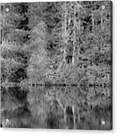 Lakeside Bliss Acrylic Print by Jeni Gray