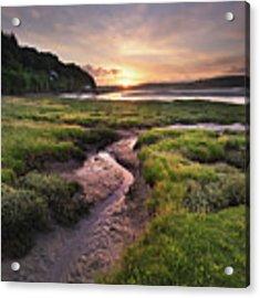 Laugharne Estuary At Sunrise Acrylic Print by Elliott Coleman