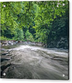 Mountain Stream In Summer #1 Acrylic Print by Tom Claud