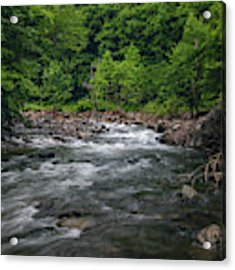 Mountain Stream In Summer #2 Acrylic Print by Tom Claud