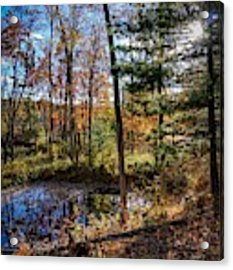 October Late Afternoon Acrylic Print by Kendall McKernon
