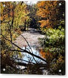 October Window Acrylic Print by Kendall McKernon