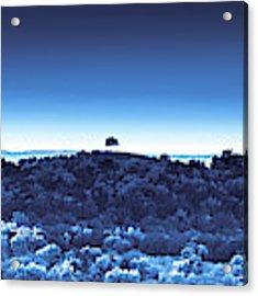 One Tree Hill -blue -2 Acrylic Print by Darryl Dalton