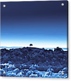 One Tree Hill - Blue 4 Acrylic Print by Darryl Dalton