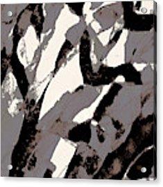 Organic 2 Abstract Acrylic Print by Menega Sabidussi