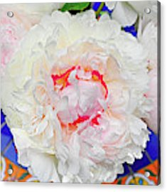 Peonies On A Garden Table Acrylic Print by William Jobes