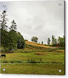 Rural Landscape In Trondheim Norway Acrylic Print by Whitney Leigh Carlson