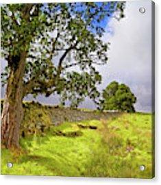 Silent Sentinel - Acharn Scotland - Drystane Dyke Acrylic Print by Jason Politte