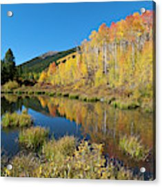 South Elbert Autumn Beauty Acrylic Print by Cascade Colors