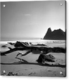 St Cyrus Beach - Scotland - Black And White Acrylic Print by Jason Politte