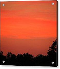 Tangerine Sunset Acrylic Print by Cynthia Guinn