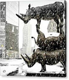 Three Rhinoceri In New York  Acrylic Print by Chris Lord