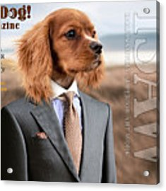 Top Dog Magazine Acrylic Print by ISAW Company