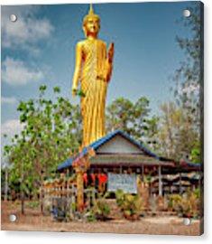 Wat Kham Chanot Golden Buddha Acrylic Print by Adrian Evans