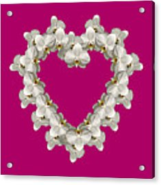 White Orchid Floral Heart Love And Romance Acrylic Print by Rose Santuci-Sofranko