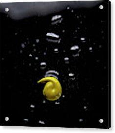 Yellow Acrylic Print by Eric Christopher Jackson