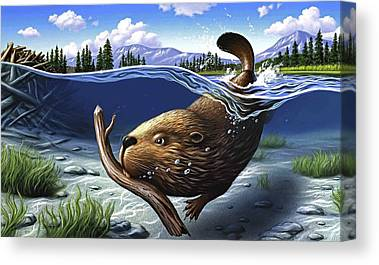 Beaver Pond Canvas Prints