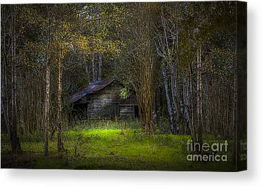 Wood Shed Canvas Prints