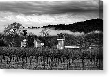 Napa Valley And Vineyards Canvas Prints