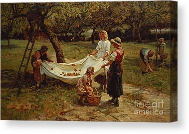 Apple Picking Canvas Prints
