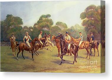 Polo Canvas Prints