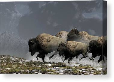 Buffalo Digital Art Canvas Prints