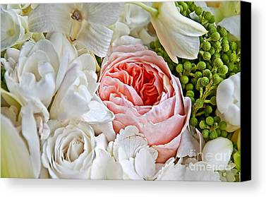 Interior Still Life Photographs Limited Time Promotions