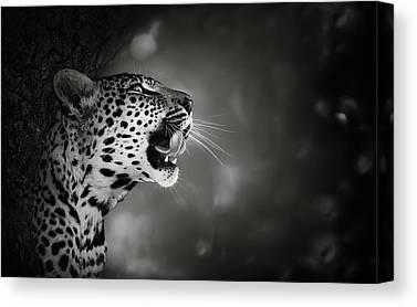 Leopard Portrait Canvas Prints