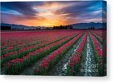 Agronomy Photographs Canvas Prints