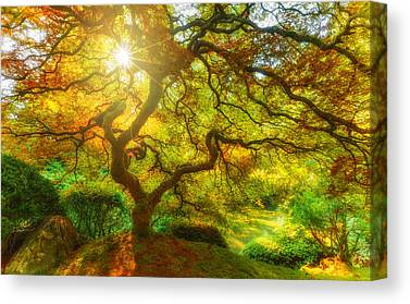 Changing Of The Seasons Canvas Prints