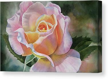 Peach Rose Canvas Prints