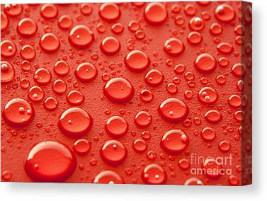 Water Drops Canvas Prints