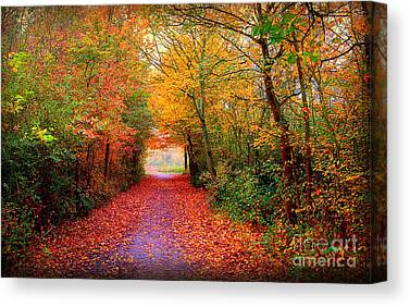 Herfst Canvas Prints