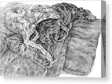 Greyhound Drawings Canvas Prints