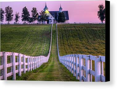 Bluegrass Photographs Limited Time Promotions