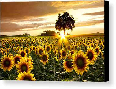 Country Photographs Limited Time Promotions