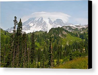 Alpine Meadows Photographs Limited Time Promotions