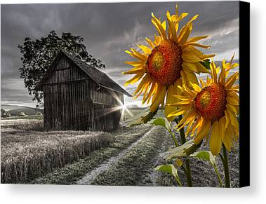 Black Americana Photographs Limited Time Promotions