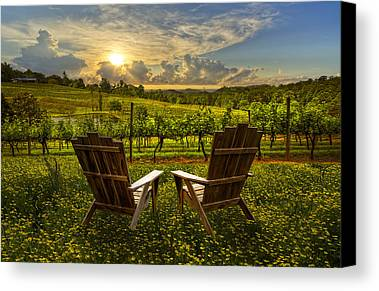Grape Vines Photographs Limited Time Promotions