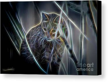 Cat Digital Art Limited Time Promotions
