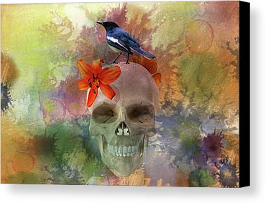 Bird Watercolor Digital Art Limited Time Promotions